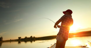 Chiêm bao mơ thấy câu cá là số mấy? đánh con gì?