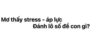 Ngủ mơ thấy stress - áp lực đánh lô số đề con gì?