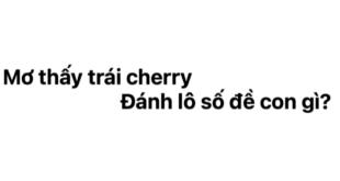 Ngủ mơ thấy trái cherry đánh lô số đề con gì?